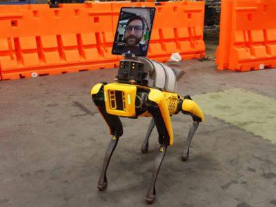 ربات سگ