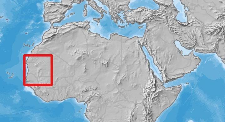 اگر فکر میکنید صحرای آفریقا پوشیده از تپههای شنی طلایی و صخرههای سوخته است، شما تنها نیستنید. شاید زمان خوبی برای پرداختن به این موضوع باشد. در بخشی از آفریقای غربی که 30 مرتبه بزرگتر از دانمارک است، یک تیم بینالمللی به رهبری دانشگاه کپنهاگ و محققانی از ناسا، توانستهاند بیش از 1.8 میلیون درخت و بوته شمارش کنند. 1.3 میلیون کیلومتر مربع از این محوطه که صحرای آفریقا و صحرای ساحل را هم پوشش میدهد، بخش غربی قاره آفریقا را تشکیل میدهد و آن را منطقه مرطوب هم مینامند. مارتین برندت، پروفسور دپارتمان زمین، در این باره میگوید:«از این که دیدیم در صحرا چندین درخت روییدهاند بسیار متعجب شدیم. به این دلیل که تابهحال بیشتر مردم فکر میکردند چنین چیزی وجود ندارد. فقط در صحرا ما بیش از صدها میلیون درخت یافتیم. البته بدون تکنولوژی یافتن درختان ممکن نبود. من معتقدم این شروع یک عصر علمی جدید است». این موفقیت به لطف ادغام تصاویر ماهوارهای ناسا با جزئیات زیاد و یادگیری عمیق که یک روش پیشرفته هوش مصنوعی است، حاصل شد و هوش مصنوعی در آمارگیری مورد استفاده قرار گرفت. تصاویر ماهوارههای معمولی قادر به شناسایی تکدرختها نبودند و تعداد زیادی از درختان از دیدشان پنهان میماند. به غیر از این، تا به حال کسی اقدام به بررسی صحرا برای یافتن درخت و شمردن آنها نکرده بود و به همین دلیل این فرضیه وجود داشت که در صحرا اصلا درختی وجود ندارد. این اولین بار است که درختانی که در یک منطقه خشک و بیابانی روییدهاند، شمارش میشوند. نقش درختان در بودجه جهانی کربن به چندین دلیل داشتن اطلاعاتی درباره درختان موجود در مناطق بیابانی و خشک، مهم است. به عنوان مثال وقتی موضوع بودجه جهانی کربن باشد، فاکتورهای ناشناختهای پدیدار میشوند. برندت میگوید:«درختان خارج از منطقه جنگلی معمولا نقشی در مدلهای آب و هوایی ندارند. در نتیجه درباره منابع کربنی آنها اطلاعاتی در دست نداریم. معمولا مناطقی که این درختان در آن وجود دارند در نقشه با نقطههای سفید مشخص هستند و در چرخه جهانی کربن هم جزئی ناشناخته به حساب میآیند». به اضافه، تحقیقات جدید روی این مناطق میتواند منجر به فهم بهتر تنوع زیستی و اکوسیستمها شود، که برای مردمی که در آن مناطق زندگی میکنند اهمیت زیادی دارد. حتی بالا رفتن اطلاعات بشر درباره نوع درختان هم مهم است. از این طریق است که میتوا
