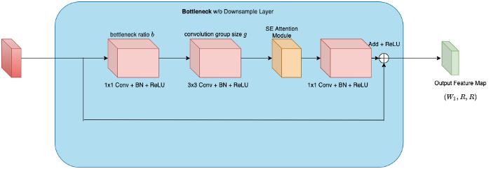 معماری RegNet