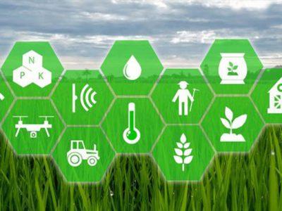 فناوری هوش مصنوعی در کشاورزی