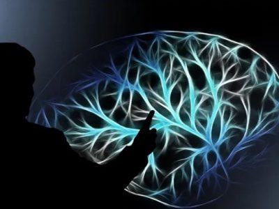 مشاهده روند تصمیم گیری در مغز