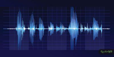 سیستم پردازش گر صوتی
