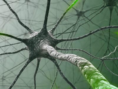 سیستم عصبی مصنوعی