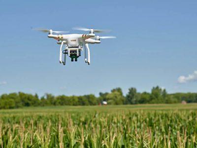 رصد بهینه زمینهای کشاورزی