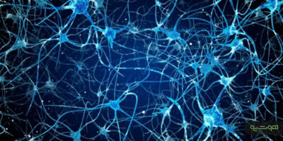مرکز رهیابی مغز