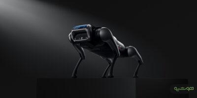 سگ ربات شیائومی